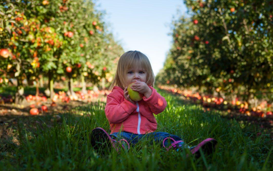 Essen ohne Druck – warum die elterliche Paranoia rund ums Essen aufhören muss
