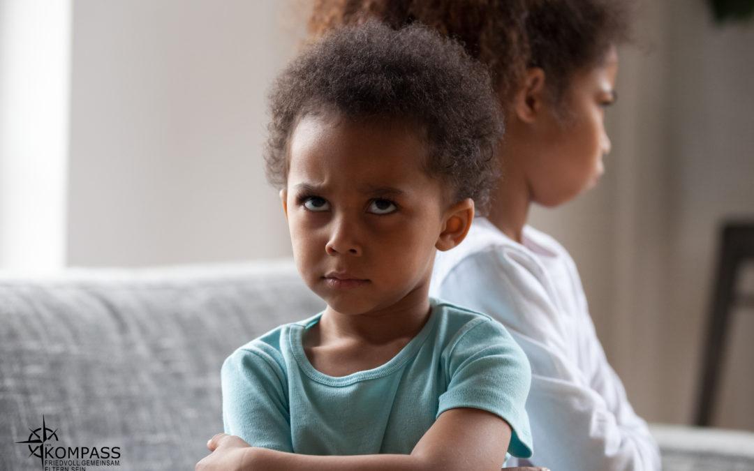 Geschwisterstreit – ein neuer Blickwinkel
